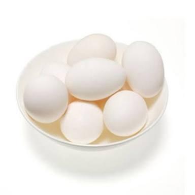 Telur ayam buras